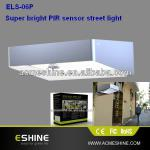 ELS-06P 2W solar light with Day/Night sensor waterproof and long life time-ELS-06P