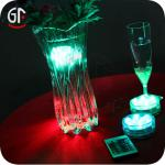 Popular Decoration Remote Controlled Battery Operated LED Light-GF -Remote Controlled Battery Operated LED Light