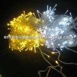 220V 6W 10M led decoration light for wedding/decorative led lights with 100pcs led-ENBR-3