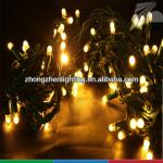 Outdoor IP65 waterproof rubber wire led decorative light-LED-SBL-100L-10M-240V
