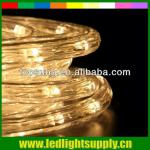 2 wire warm white solar rope lights-TP-RL2W36LED