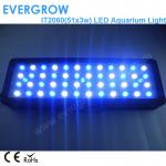 Evergrow IT2060 51x3w Programme Auto Dimmable Marine Aquarium LED Lighting-IT2060