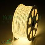 HUGEWIN upgrades 3528 120leds per meter led strip 220v single line waterproof led strip-3528-120