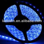companies looking for representative 24v 12 volt PU Glue Not Go Yellow IP65 60led/m 3528&5050 Flexible LED Strip 3years warranty-LA-SL3528S-WP12D60