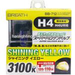 H4 rainbow yellow auto bulb-12V 60/55W