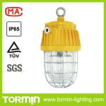 70w MH Explosion proof Tunnel light lamp-DGS70/127B(E)