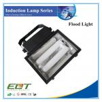 Electrodeless Flood Induction Light with Self Ballast Low Frequency-TG704 Induction Light