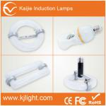 Low lumen decay electrodeless magnetic discharge lamp-VE-DS