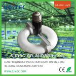 INDUCTION LAMP 40-300W E40, LOW FREQUENCY INDUCTION LIGHT-UN-SICE-300