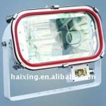 stainless steel flood halogen light-TG4