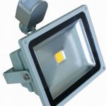 Best seller 10w 20w 30w 50w Led floodlight with motion sensor-LY-FL-P010