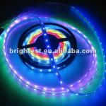 BG-210B-5050-150--IC 10 points 30 LEDS/M DMX Strip-BG-210B-5050-150--IC