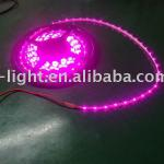 3528 60LEDs strip lamp 24V pink uv color-YD-FPC 100C10/60