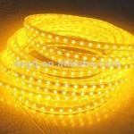 LED Rope light (square2 Wire)/lighting manufacturer CE/RoHS-DS-S2-yellow-LED RL