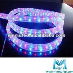 quake proof 36 leds led neon flex rope light-LS-RF3R