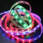 IP65 waterproof 5050 led neon strip-SUN-5F12T100012L60-R