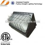 High power anti-explosion outdoor wall lighting-DS-404