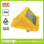 70w MH Explosion proof Tunnel light lamp Floodlight-DGS70/127B(C)
