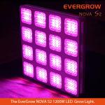 2014 Evergrow Latest Masterpiece Nova S2 M16 1200W led grow light for indoor cultivation-Monster 16