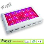 11 band led grow light for lettuce/tomato/topato/horticultural/greenhouse/indoor growing-WY-G24