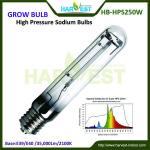 Aeroponics equipments 250 watt hps light-HB-LU250W