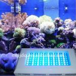 120W led discount aquarium lighting led hook fish light-LJSZD-120RB