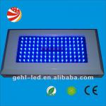 120w led aquarium blue white plant grow fish light-GEHl led aquarium light 112*1-009