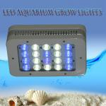 Mini 50W aqua coral reef fish tank light with Two manual dimmer-W-S-50W