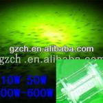 12V 24Vdc, AC 10W-600W submersible underwater green led fishing light Stick-CH UWFLED100W
