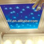 Twinkle clear fiber optical ceiling light , starry ceiling light led light-DS274