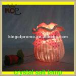 himalayan natural salt crystal lamp-